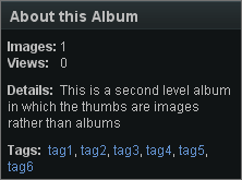 About this album image thumbs.png